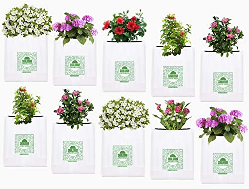 Shalimar Grow Bags (UV Stabilized) Size (Length - 24 cm X Width - 24 cm X Height - 40 cm) (Set of 10 Bags)