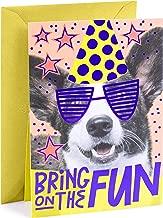 Hallmark Pop Up Birthday Card (Birthday Dog)
