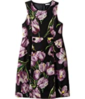 Dolce & Gabbana Kids - City Tulip Print Dress (Big Kids)