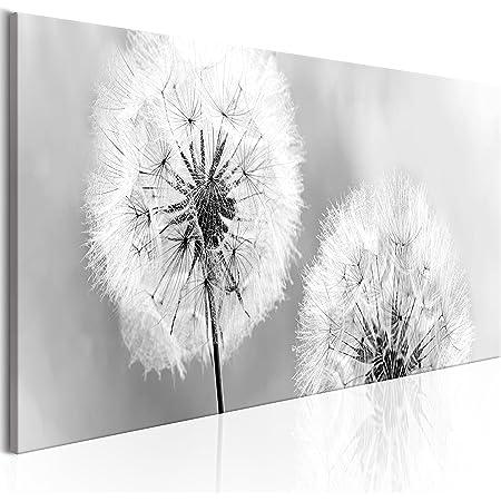 BLUMEN PUSTEBLUME WIESE NATUR Wandbilder xxl Bilder Vlies Leinwand 030210-76