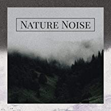 Nature Noise – Soothing Instrumental Music, Piano, Flute, Harp, Guitar, Singing Birds, Ocean Waves, Water and Cicadas