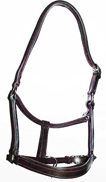 The Ragnar Collection Brown Leather Headcollar With No Clip full
