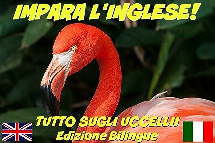 IMPARA LINGLESE!  TUTTO SUGLI UCCELLII (CON AUDIO): Edizione Bilingue (Inglese/Italiano) (Impara linglese! Tutto su... Vol. 1)