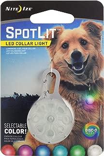 disco dog collar
