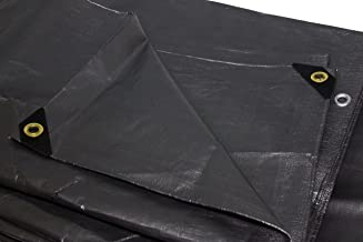 12ft. x 20ft. Silver Replacement Tarp for 10ft. x 20ft. Canopy