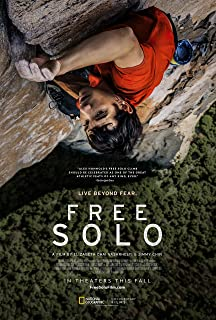 newhorizon Free Solo Movie Poster 17'' x 25'' NOT A DVD