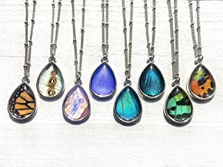 Real Butterfly Wing Necklace Glass terrarium pendant Taxidermy jewelry Teardrop necklace Sterling silver or 14k gold option