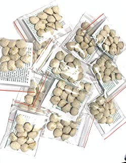5 Pack Indian Nut 60 Seeds for Weight Loss original Nut,Indian seed