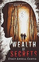 Wealth of Secrets: (Christian Romantic Suspense) (Texas Security Series Book 1)
