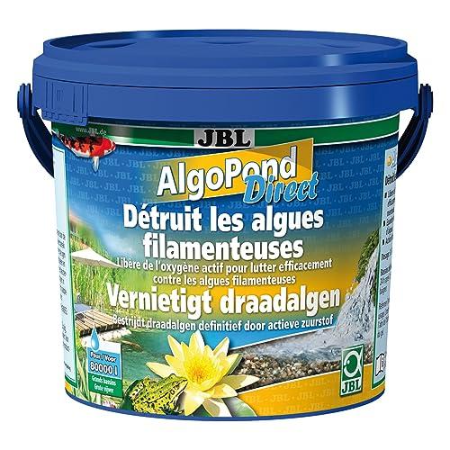 Anti Algues Bassin: Amazon.fr
