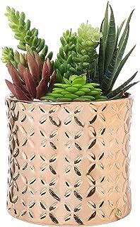 Best copper colored planter Reviews