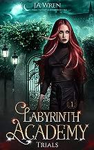 Best labyrinth academy ebook Reviews