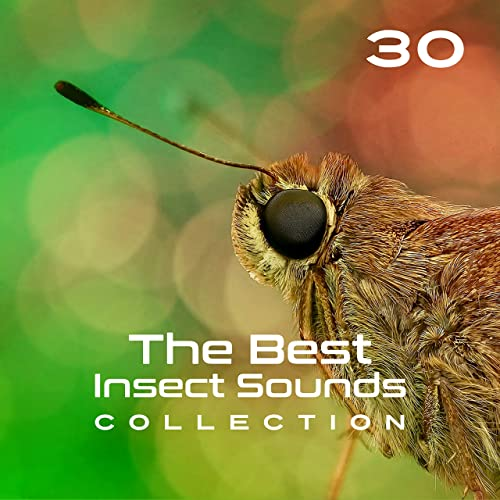 Creature Sounds