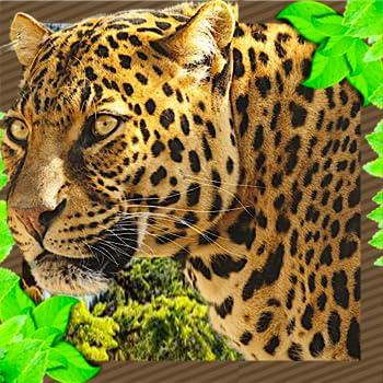 Wild Jaguar Family Simulator