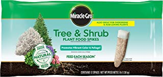 Miracle-Gro 485101205 Tree & Shrub Plant Food Spikes