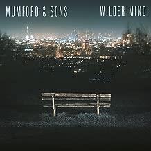 mumford and sons wilder mind cd