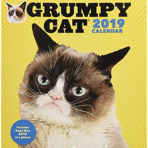 Image of: Tardar Sauce 2019 Wall Calendar Grumpy Cat Tagmag Grumpy Cat Amazoncouk