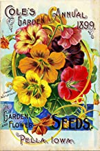 A SLICE IN TIME 1899 Pella, Iowa Cole's Garden Vintage Flowers Seed Packet Catalogue Travel Advertisement Collectible Wall Decor Poster Print. Measures 10 x 13.5 inches