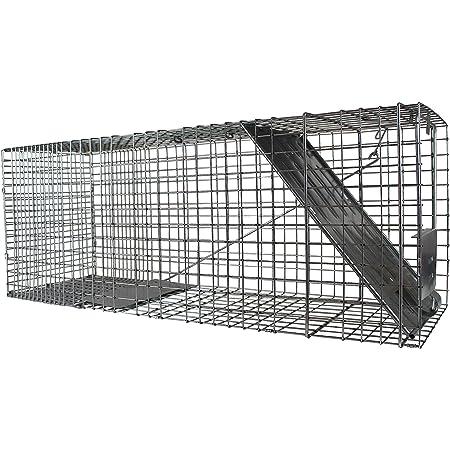Havahart 1079 Large 1-Door Humane Animal Trap for Raccoons, Cats, Groundhogs, Opossums