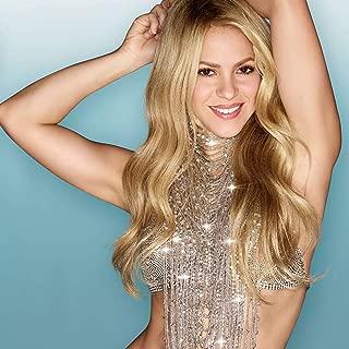 Shakira Singer Songwriter Rare 12x18 inch Rolled Poster