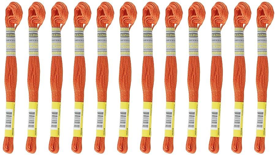Sullivans Six Strand Embroidery Cotton 8.7 Yards-Medium Burnt Orange 12 per Box