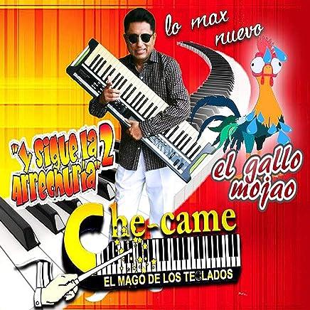 El Gallo Mojao