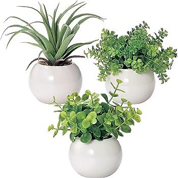 ミニ インテリアグリーン 造花 観葉植物 ユーカリ、エアプランツ、ファンシェイプ グリーン 3点セット