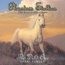 The Wild One: Phantom Stallion, Book 1