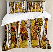 Ambesonne Fall Duvet Cover Set, White Fall Birch Trees with Autumn Leaves Growth Wilderness Ecology Calm Serene View, Decorative 3 Piece Bedding Set with 2 Pillow Shams, King Size, Dark Orange
