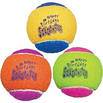 KONG SqueakAir Birthday Ball Dog Toy