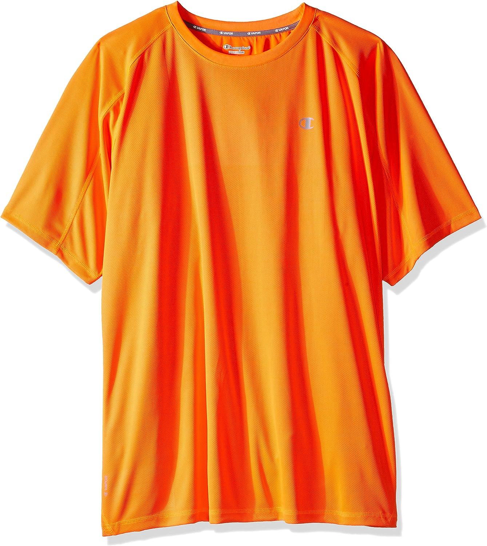 Champion Men's Big and Tall Performance Raglan T-Shirt