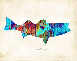 Striped Bass Fish Watercolor Art Print by Dan Morris