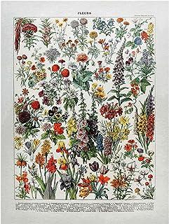 Bilderwelten Pizarra magnética - Vintage Board Flowers IV 40x30cm