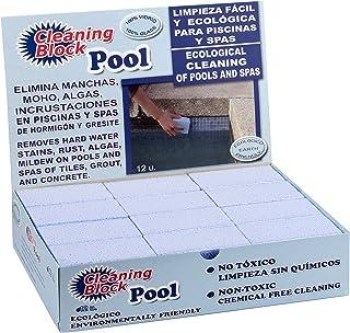 Cleaning Block 10023EI Bloque para Limpieza de Piscina, 12 Unidades