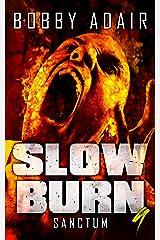Slow Burn: Sanctum, Book 9 Kindle Edition