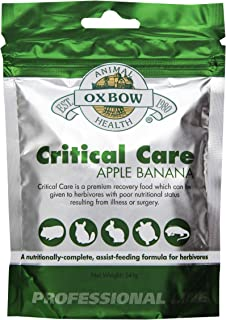 oxbow critical care for bearded dragons