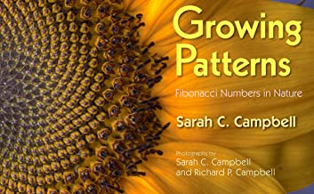 Best growing patterns fibonacci numbers in nature Reviews