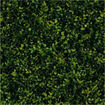 Milltown Merchants Artificial Hedge - Outdoor Artificial Plant - Great Boxwood and Ivy Substitute - Sound Diffuser Privacy Fence Hedge - Topiary Greenery Panels (12, Golden Boxwood)
