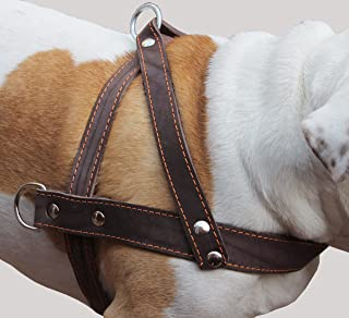 Genuine Brown Leather Dog Pulling Walking Harness XLarge. 35