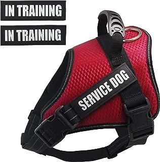 Dihapet No Pull Dog Harness, Adjustable Service Dog Vest, Reflective Easy for Walking Training