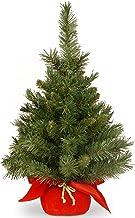 National Tree Company Artificial Mini Christmas Tree | Includes Cloth Bag Base | Majestic Fir - 2 ft