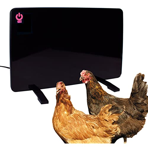 Chicken Heat Lamp Amazon Com