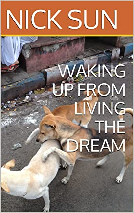 WAKING UP FROM LIVING THE DREAM (English Edition)