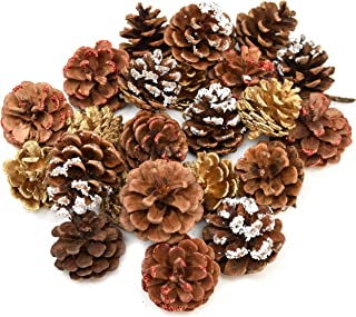 Gift Boutique 24 Pack Natural Pine Cones for Christmas Fall Thanksgiving Harvest Autumn Party Craft Accessory Decorations, 4 Winter Holiday Colors Red White Gold and Brown