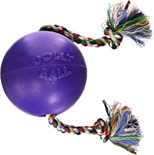 Romp and Roll Ball