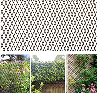 Melchef Nature Willow Trellis Expandable Plant Support Plant Climbing Lattices Trellis Willow Expandable Trellis Fence for Climbing Plants Support 36x92 Inch,Double Panel