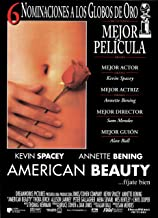 american beauty steelbook