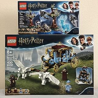 LEGO Harry Potter Beauxbatons' Carriage: Arrival at Hogwarts Bundled Harry Potter Expecto Patronum