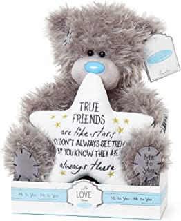 Me To You True Friends are Like Stars Tatty Teddy Bear