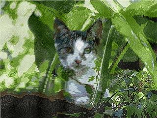 Cat Peeking Needlepoint Canvas